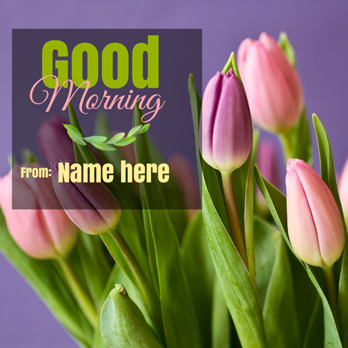 Good Morning Wishes Elegant Whatsapp DP Pics With Name