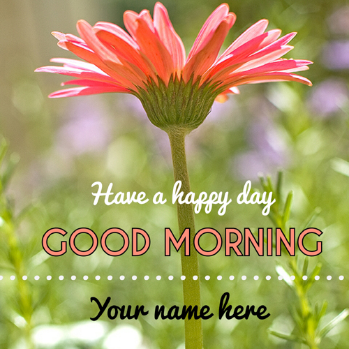 Good morning wishes flower greeting picture