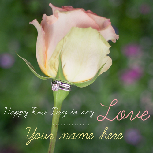 Valentines Day Wishes Special Rose Day Pics With Name