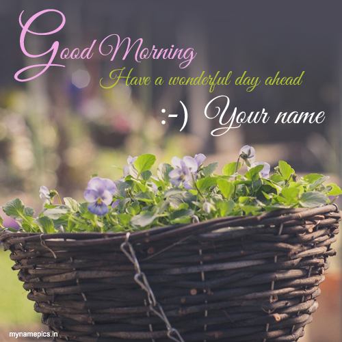 Write name on Good morning nice day profile pics